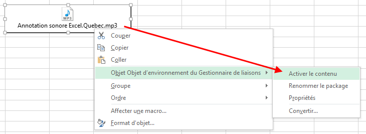 Lire annotations sonores Excel